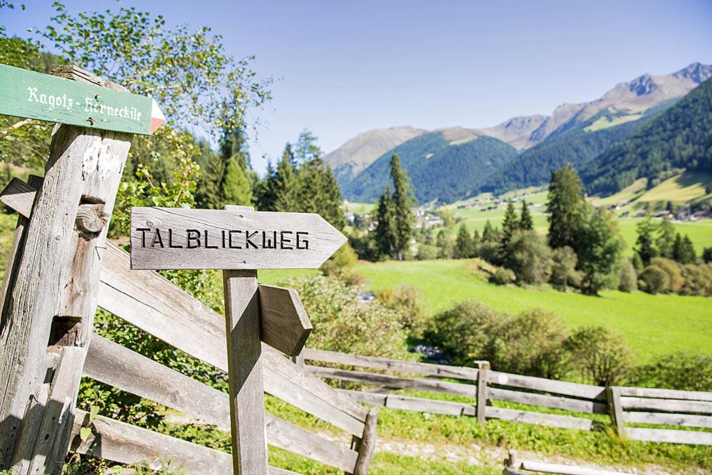 talblick-weg-bauernhof-taisten-escursioni-agriturismo-hiking-farm